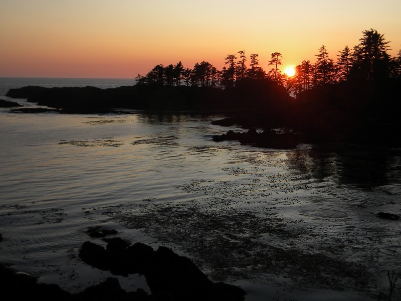 Ucluelet